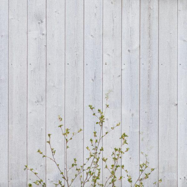 närbild fasad i organowood